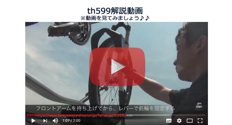 th599 video